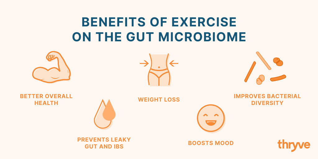 exercise and human gut benefits