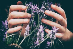 how to improve gut health naturally with lavender essential oil