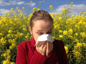 manage your allergies sneezing
