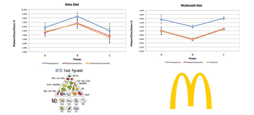 ketogenic diet vs mcdonald's diet