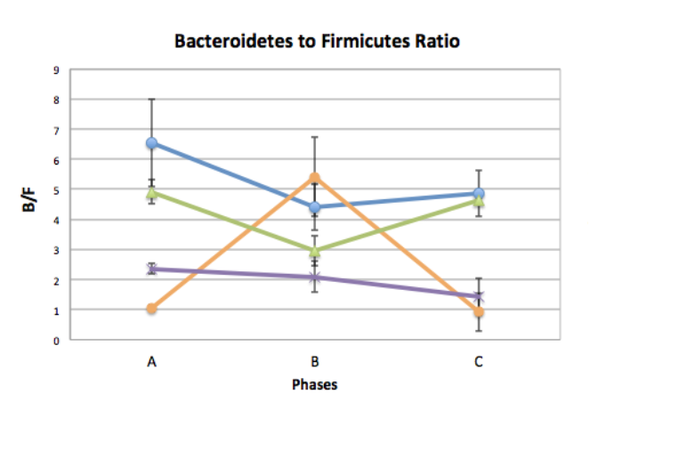 firmicutes in ketogenic diet