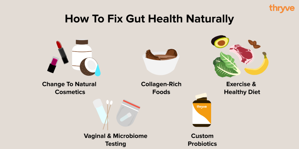 how to fix gut health naturally