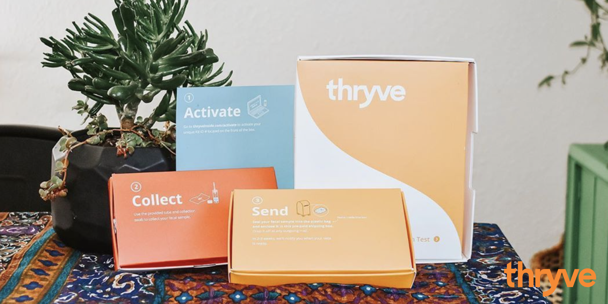 Thryve Gut Health Test Kit Review